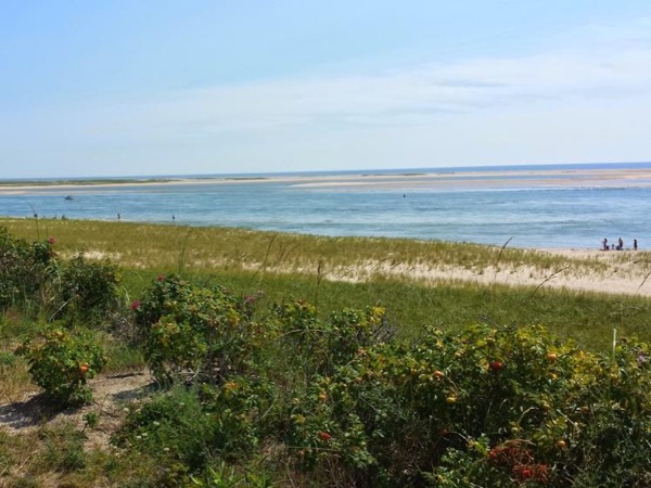 Day-trip to Cape Cod