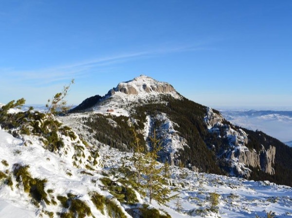 One-day winter tour-in the Carpathians-ski slopes-snow covered forests