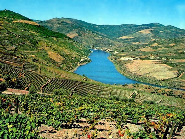 Porto- Douro Valley Full day private tour