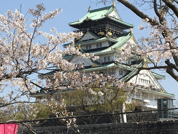 Full-Day Osaka Tour with A Private Guide