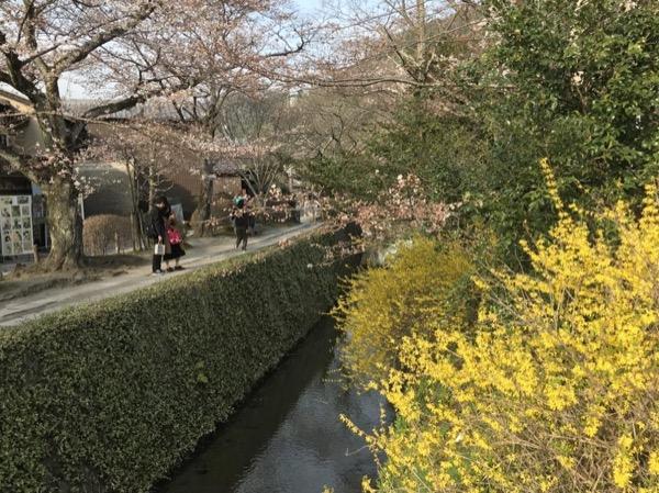 Walk around Highlights of Nara & Osaka; Full Day Tour