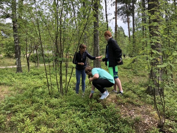 Finnish Nature Experience & BBQ