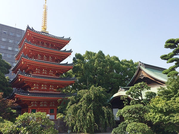 Full-day Private Tour in Hakata, the Old and the New