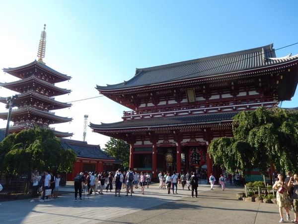 Tokyo Must-See Spots One Day Tour