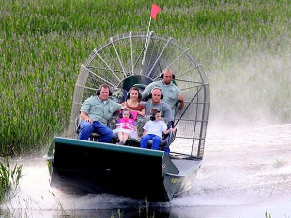 Everglades, private Airboat & Swamp Buggy