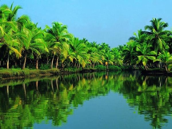 Alleppey Village Narrow Canal Backwater Tour