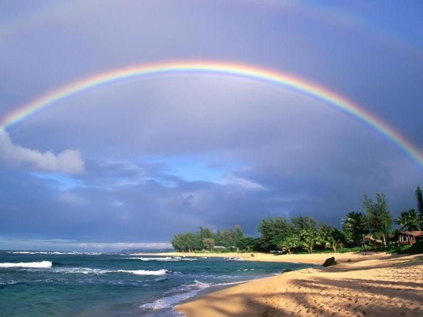 The Best Hawaiian Beach Private Tour