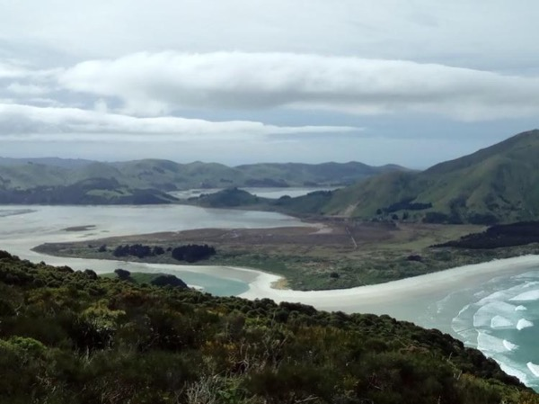 Dunedin City Highlights, Spectacular Scenery and Lover's Leap Walk