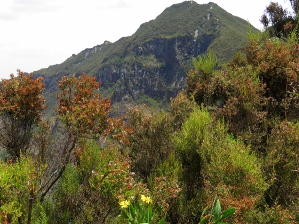 Day Hike to Mount Longonot