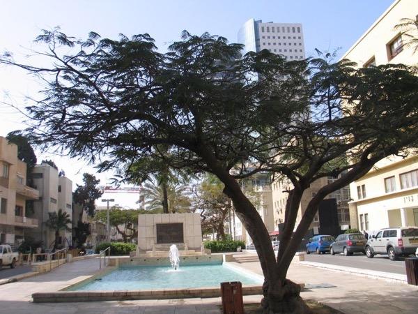 Tel Aviv and Jaffa Private Tour