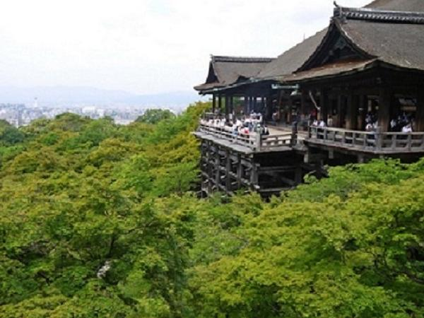 Private Tour for Kyoto - Half Day walking tour of Kiyomizu temple and Gion district