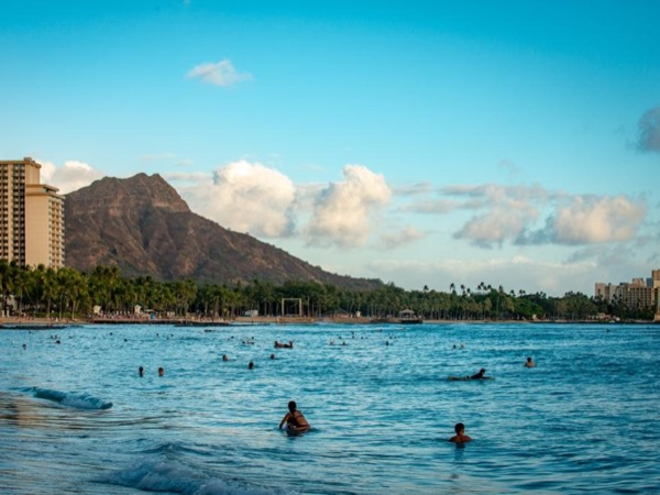 Fond Farewell Private Oahu Tour