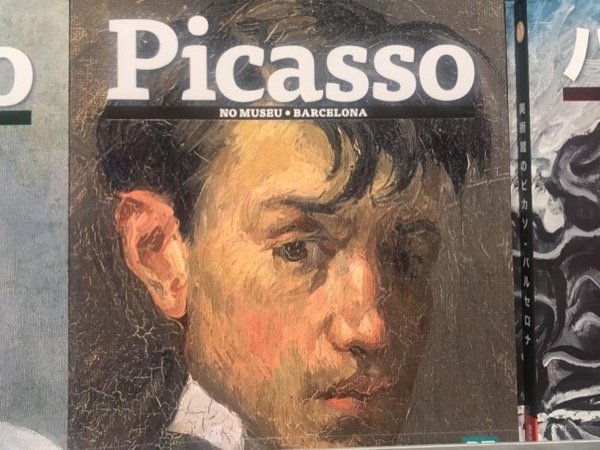 Picasso in Barcelona Private Tour - Old City and Picasso Museum