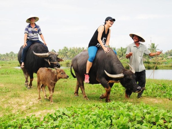 Eco tour and Hoi An sightseeing