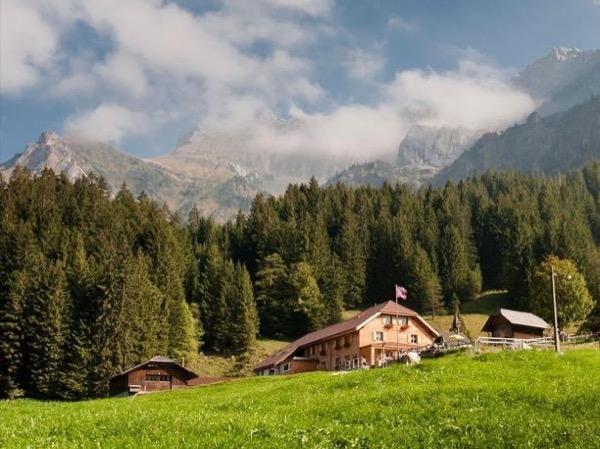 Swiss Food Tasting Private Tour on a Mount Pilatus Farm, Lucerne