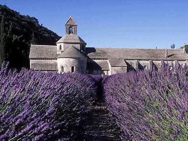 Provence mon Amour - Private Tour