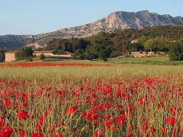 Aix, Cassis and Le Castellet - Private Tour