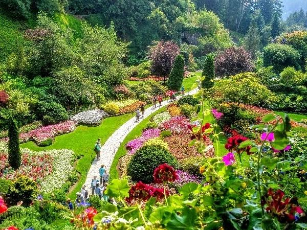 Private Historical Tour of Victoria and the Butchart Gardens