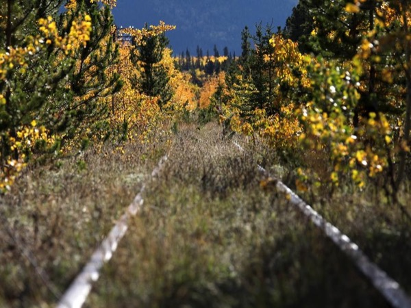 Full Day Private Hiking tour from Skagway to Carcross, Yukon Territory