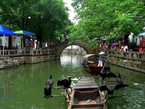 Private tour guide Xiao Jun