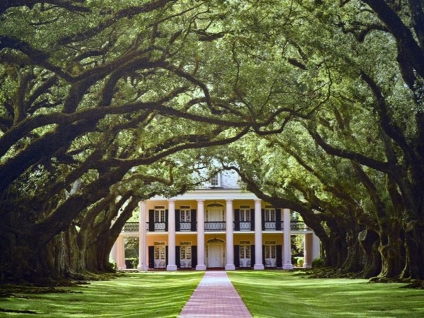 New Orleans Plantation and Private City Tour