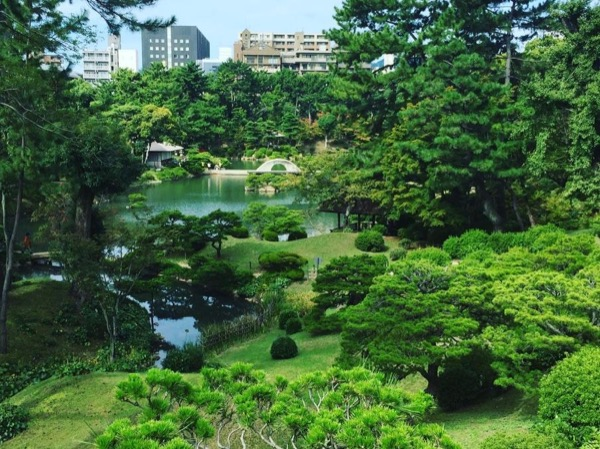 Shore Excursion: Half Day Hiroshima Private Walking Tour