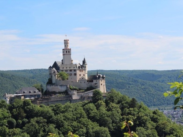 Full Day Rhine River Private Tour