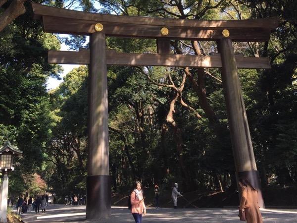 Tokyo Half-Day Highlight Walking Tour