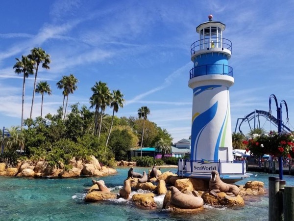 SeaWorld Orlando Private Tour