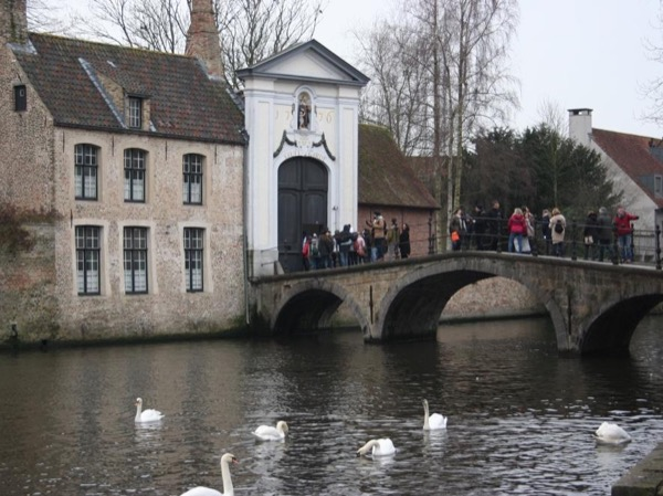 Shore Excursion: Highlights of Bruges