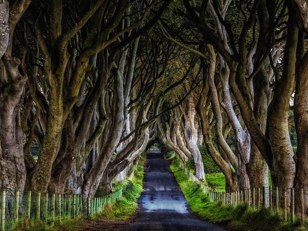 Game Of Thrones - Film Locations - Private Tour - Co.Antrim locations.