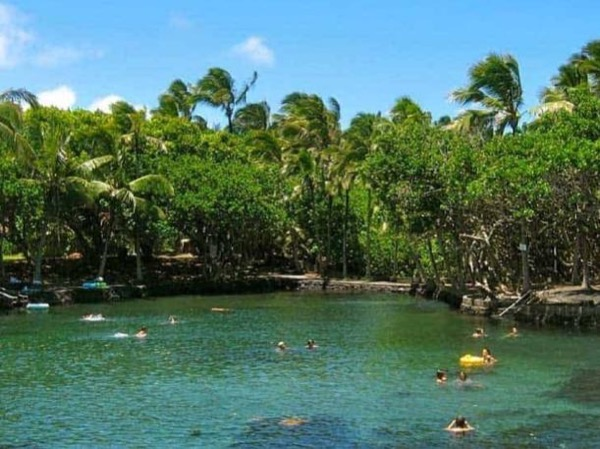 Private Tour - Kona To Natural Hot Ponds