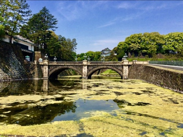 Tokyo Historical Heritages Full-Day Private Tour