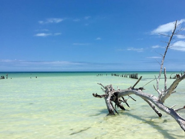 Holbox Private Excursion