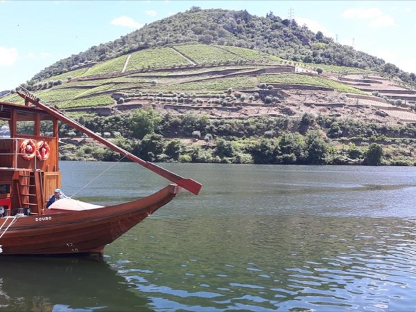Douro Private Full Day Tour - A Day Trip From Porto