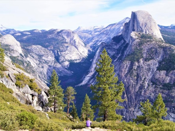 Sequoia and Yosemite National Parks in 2 days! - A Private Tour from Los Angeles