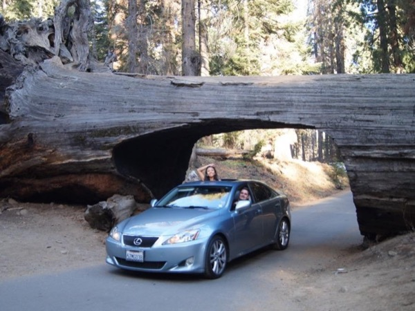 Sequoia National Park - A Private Tour from Los Angeles