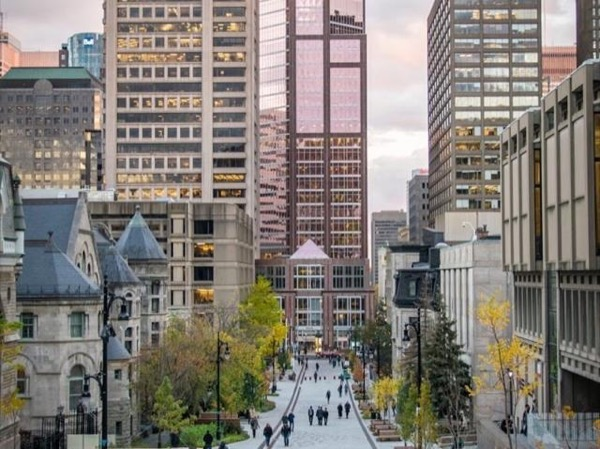 A Bit of Everything in Montreal: Mountain to River (Private Walking Tour)