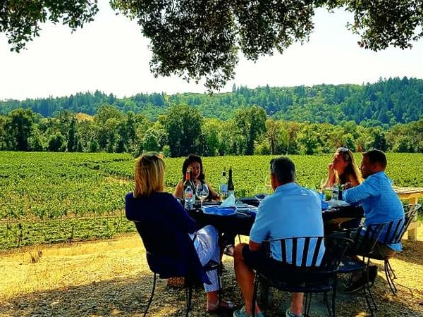 Sonoma Valley Full Day Winery Excursion