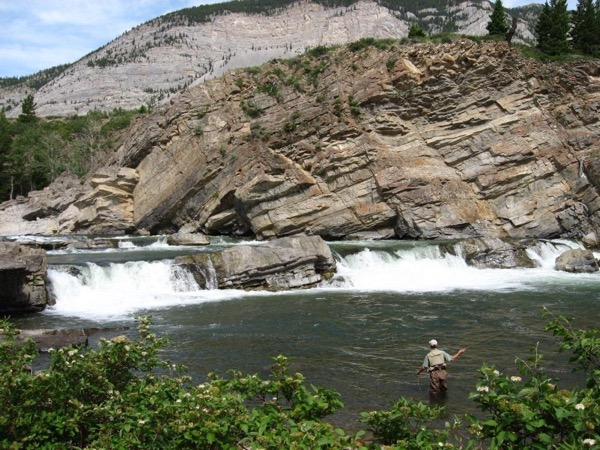 Full Day Small Stream Fly Fishing Tour with a Private Guide