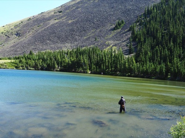 Alberta Rocky Mountain Private Fly Fishing Tour