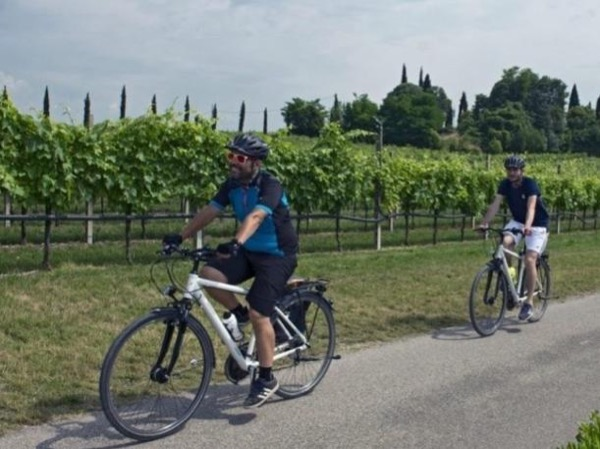Vineyards E-bike tour and wine tasting in Valpolicella