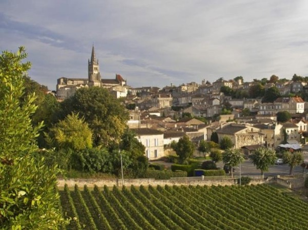 Private Bordeaux Right Bank Wine Tasting Full Day Tour