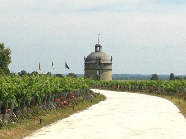 Private Bordeaux Left-Bank Wine Tasting Full Day Tour