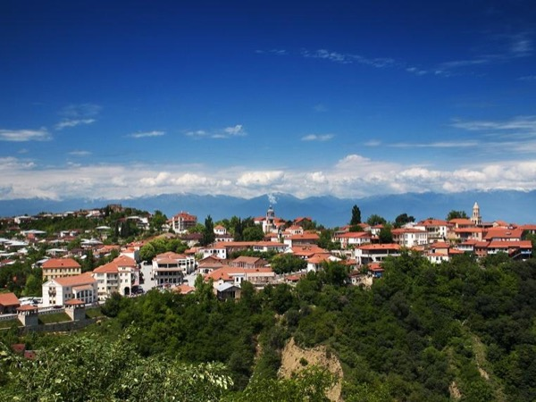Kakheti (wine region) One Day Private Tour