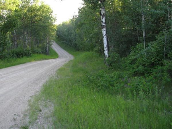 Private Tour of Edmonton Natural Area and Nature Sanctuary