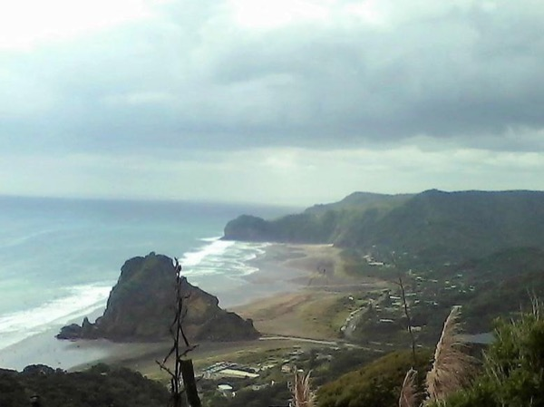 1 Great Day - Auckland City, Piha, West Coast, Arataki, Black Sand Beaches, Rainforest - Private Tour