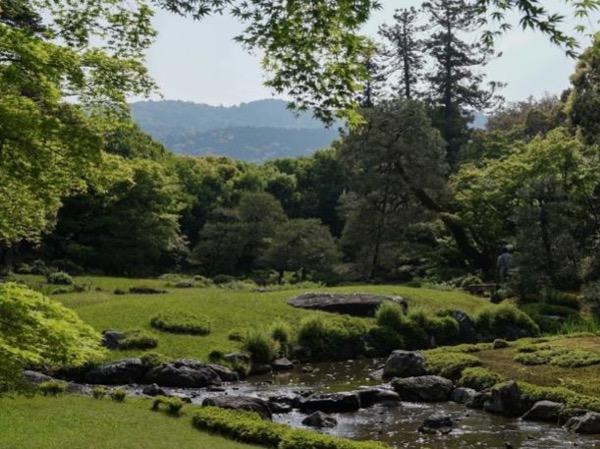 A Visit to Stunning Kyoto Japanese Gardens