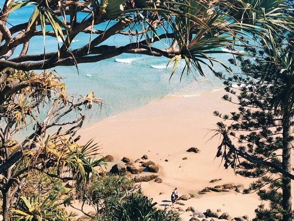 Highlights of Southern Gold Coast, Tweed Coast and Byron Bay Full Day 7 Hours