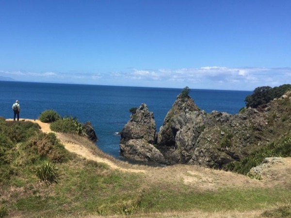Stunning Auckland East Coast Walk & Wine Private Tour